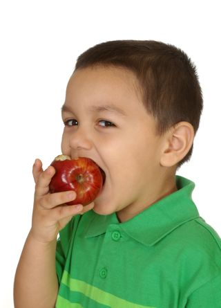 Foods To Help Your Kid's Stay Focused At School - The ...